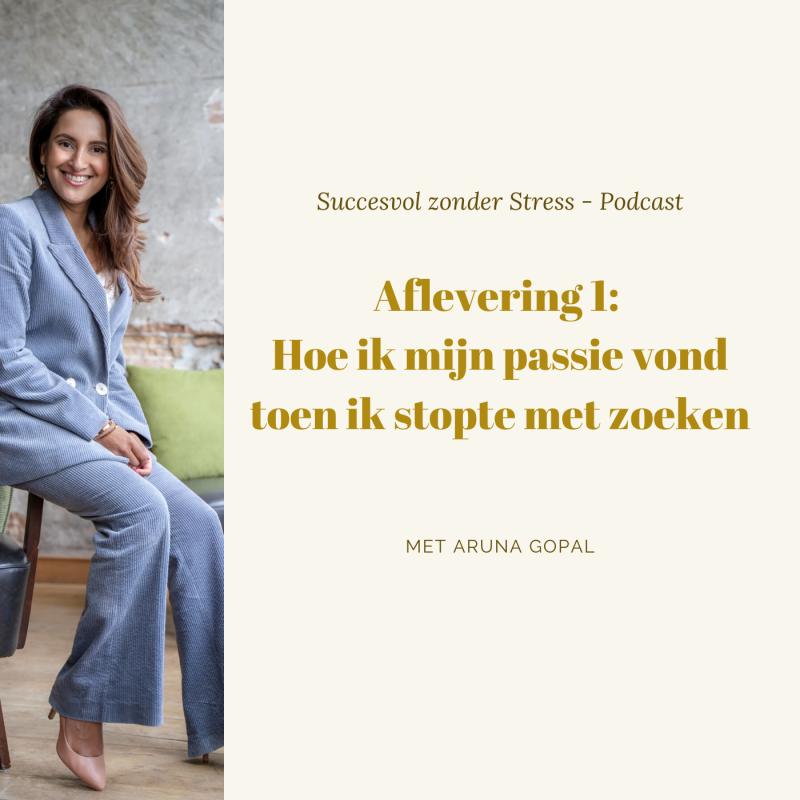 Hoe ik mn passie vond toen ik stopte met zoeken - Aruna Gopal