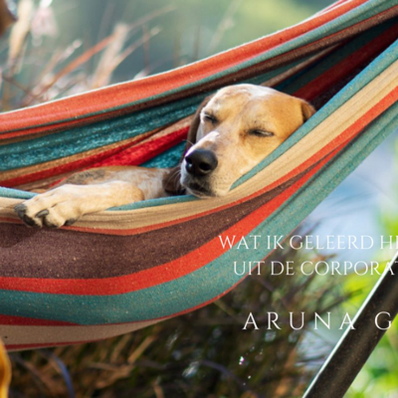 Aruna Gopal - Wat ik geleerd heb na 1 jaar uit de corporate ratrace