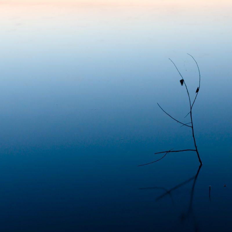 tak in water bij artikel aruna gopal